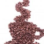 Willkommen beim Coffeeshop-Magazin